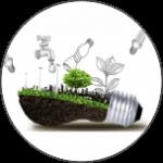 cultura eco